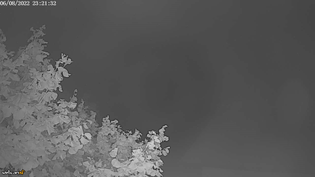 Webcam Bild